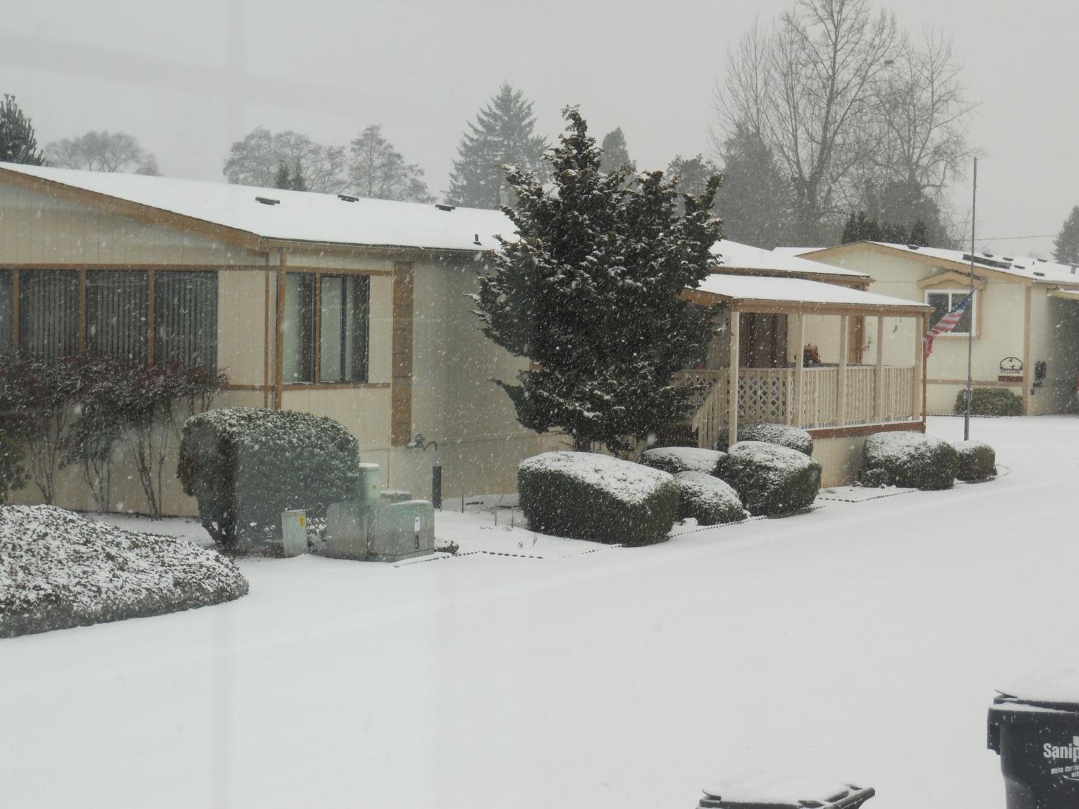 2-6-13 snow (5) Mom & Dad's house