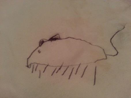 Emma's mouse drawing 12-3-2013